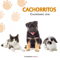 Calendario Cachorritos 2018